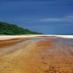 https://www.reisgidsaustralie.nl/wp-content/uploads/2014/07/Fraser-Island-40240.jpg